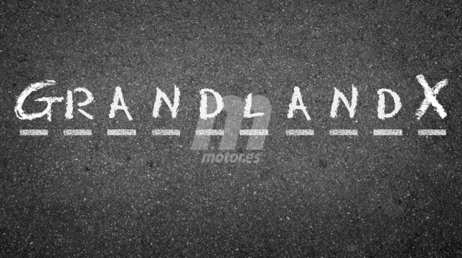 opel-grandland-x-201631924_7.jpg