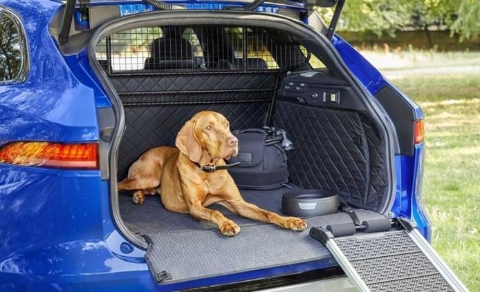 Los accesorios de Jaguar para que las mascotas viajen en el coche