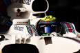 Foto 5: Felipe Massa