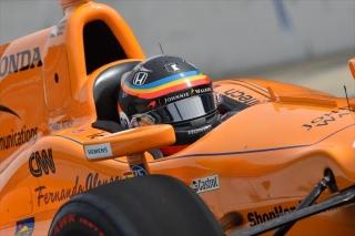 Fotos Fernando Alonso Indy 500 Foto 82