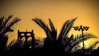 Fotos GP Bahréin F1 2019 Foto 33