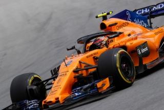 Fotos GP Brasil F1 2018 Foto 54