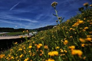Las fotos del GP de Estiria F1 2020 - Foto 1