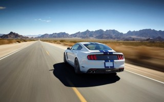 Fotos Mustang Shelby GT350 Foto 17