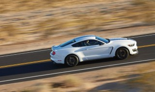Fotos Mustang Shelby GT350 Foto 18
