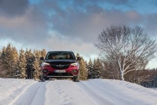 Fotos Opel Grandland X Hybrid4 - Miniatura 9