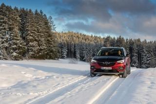Fotos Opel Grandland X Hybrid4 - Miniatura 10