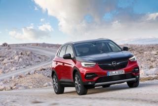 Fotos Opel Grandland X Hybrid4 Foto 19