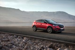 Fotos Opel Grandland X Hybrid4 - Miniatura 28