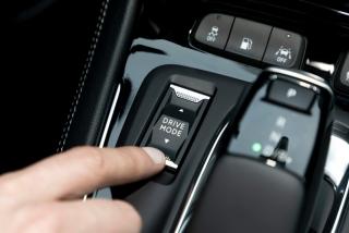 Fotos Opel Grandland X Hybrid4 - Miniatura 43