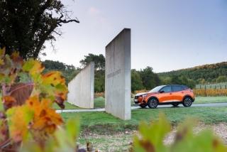 Fotos Peugeot 2008 2020 Foto 66