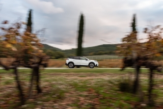 Fotos Peugeot 2008 2020 Foto 113