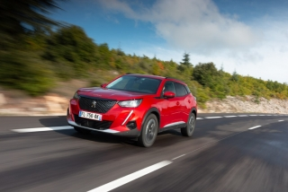 Fotos Peugeot 2008 2020 Foto 125