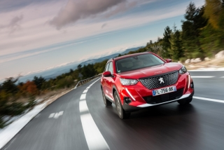 Fotos Peugeot 2008 2020 Foto 138