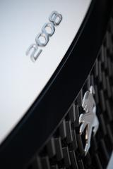 Fotos Peugeot 2008 2020 Foto 204