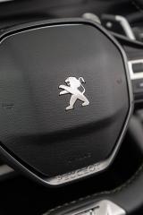 Fotos Peugeot 2008 2020 Foto 228