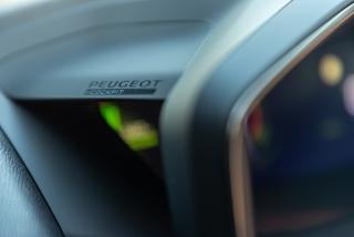 Fotos Peugeot 2008 2020 Foto 238