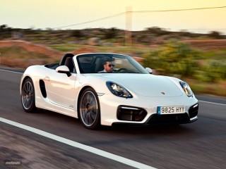 Fotos Porsche Boxster GTS Foto 10