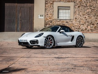 Fotos Porsche Boxster GTS Foto 17