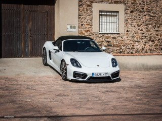 Fotos Porsche Boxster GTS Foto 19