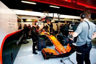 Foto 3 - Fotos Stoffel Vandoorne F1 2017