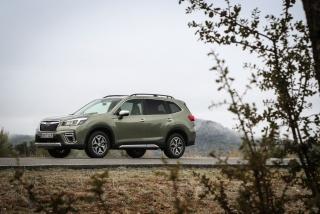 Galería Subaru Forester Eco-Hybrid - Foto 1