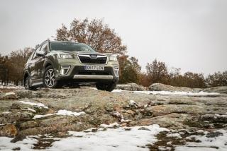 Galería Subaru Forester Eco-Hybrid Foto 4