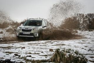 Galería Subaru Forester Eco-Hybrid Foto 12
