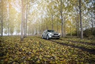 Galería Subaru Forester Eco-Hybrid Foto 13