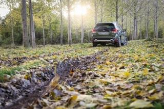 Galería Subaru Forester Eco-Hybrid Foto 21
