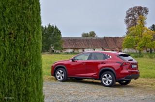 Fotos Lexus NX 300h, presentación Foto 30