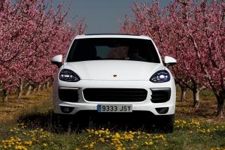 Prueba offroad Porsche Cayenne Foto 24
