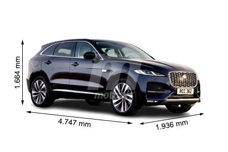 Medidas Jaguar
