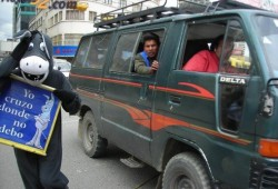 CEBRAS Y BURROS NOS ENSEÑAN A CONDUCIR EN BOLIVIA
