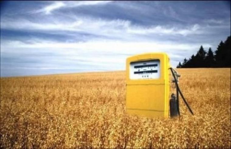 Obama quiere más biocombustible en Estados Unidos