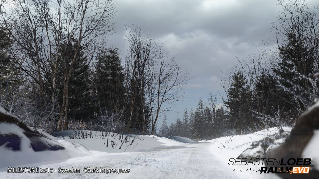 Sébastien Loeb Rally Evo muestra la nieve en imágenes