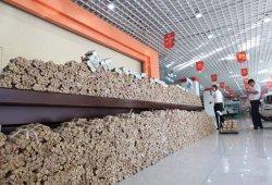 Un chino paga su coche nuevo con cuatro toneladas de monedas