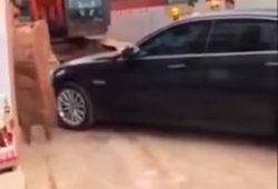 Una excavadora desesperada se dedica a mover coches a palazos