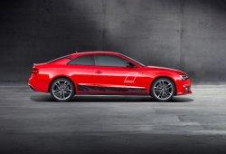 Audi A5 DTM selection: los detalles marcan la diferencia