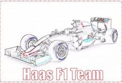 Análisis comparativo 2015/2016: Haas