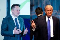 Elon Musk abandona el grupo de asesores de Donald Trump