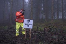La Phytophthora obliga a cambiar el Rally de Gales