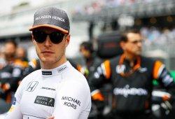 """Vandoorne: """"Alonso es un gran punto de referencia e intento beneficiarme de ello"""""""