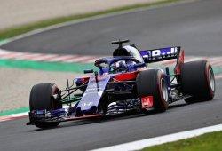 """""""Test excelente"""" de 147 vueltas para Toro Rosso y Honda"""