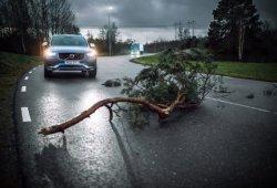 Volvo Cars y Volvo Trucks comparten datos de vehículos en vivo para mejorar la seguridad