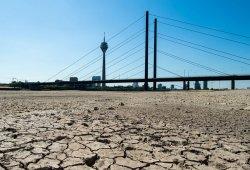 La sequía en Alemania afecta al suministro de combustible en Europa