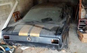 Descubren uno de los raros Ford Mustang Shelby GT350H '66 abandonado