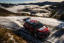 Los doce protagonistas de la temporada 2019 del WRC