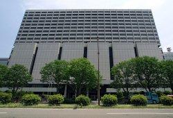 Carlos Ghosn se enfrenta el martes a una audiencia pública en Japón