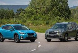 Los nuevos híbridos de Subaru ya tiene precio, llega la gama ECO Hybrid